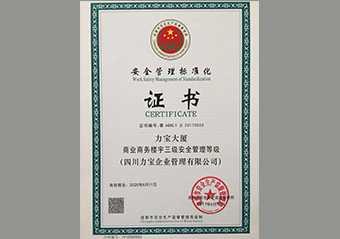 安全管理标准化证书