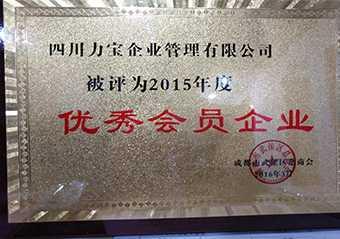2015年度优秀会员企业