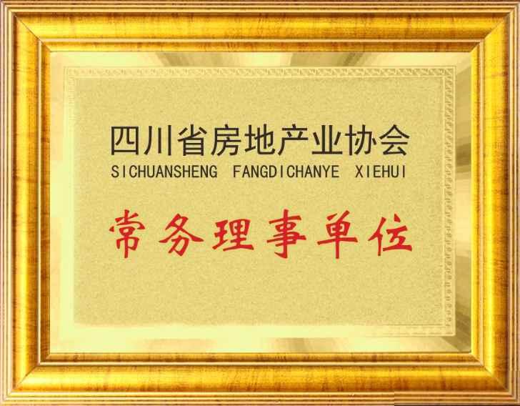 四川省房地产业协会常务理事单位